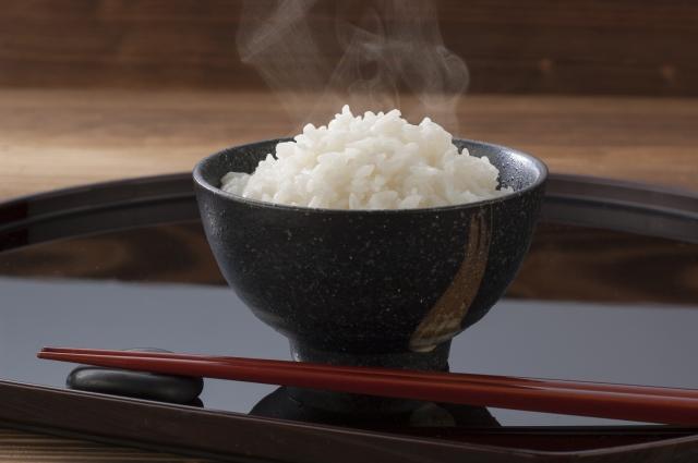 無農薬玄米の発芽比較!ミナミニシキvsヒノヒカリ