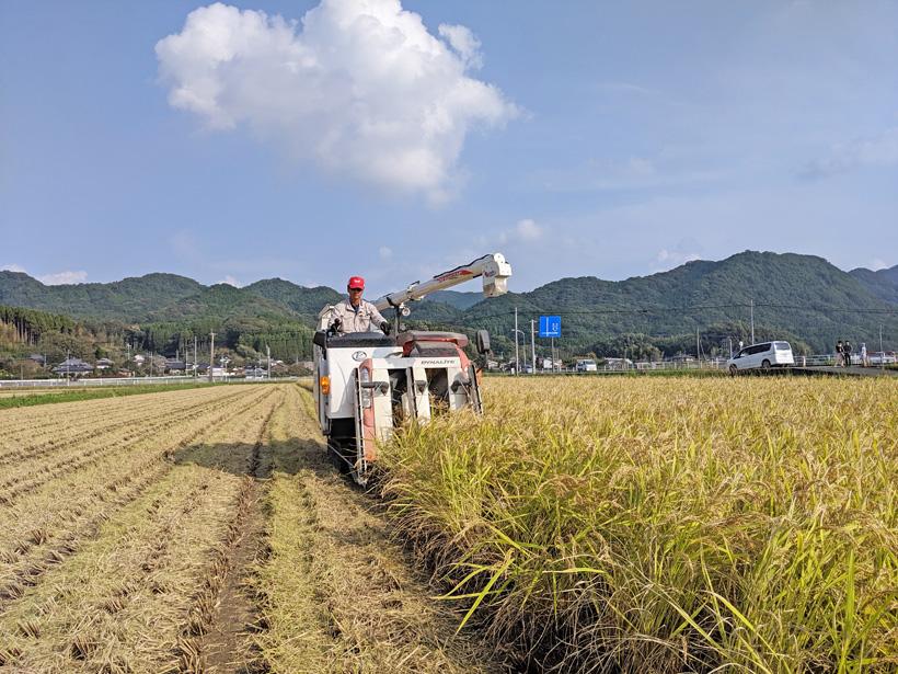 前田自然栽培米ミナミニシキの収穫