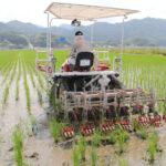 自然栽培米ミナミニシキを作る前田さんが振り返る令和2年の米作り
