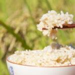 無農薬玄米の中でも熊本産のミナミニシキが選ばれている理由とは