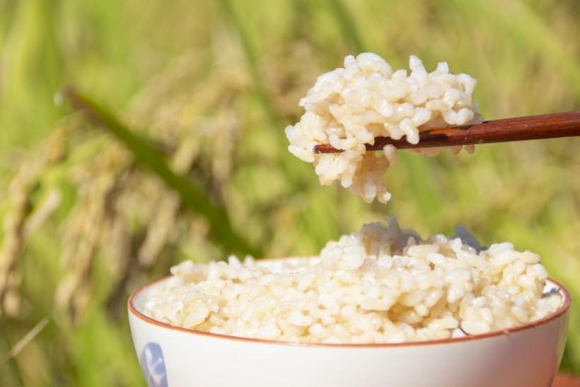 玄米ごはん