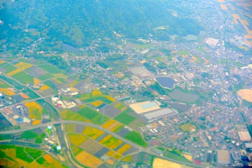上空から見た田んぼ
