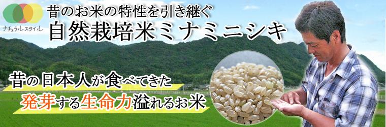 熊本県自然栽培米・自然農法米ミナミニシキ