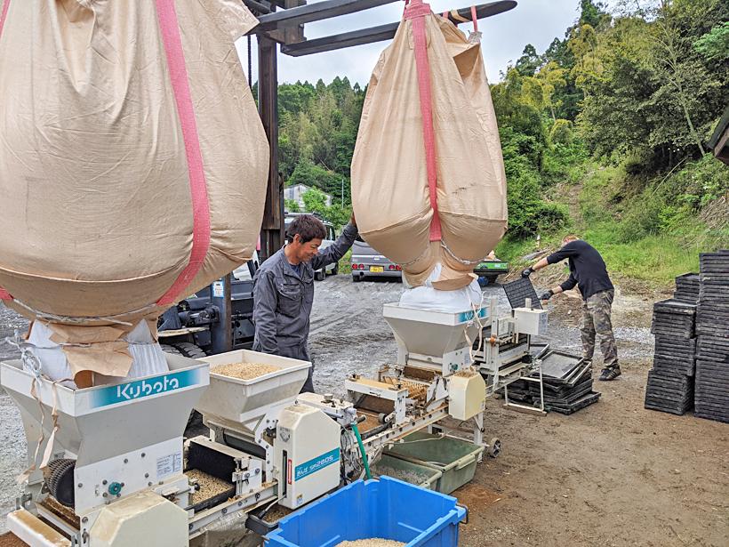 前田ミナミニシキの播種・苗床作業開始|自然に任せた環境で逞しい苗作り