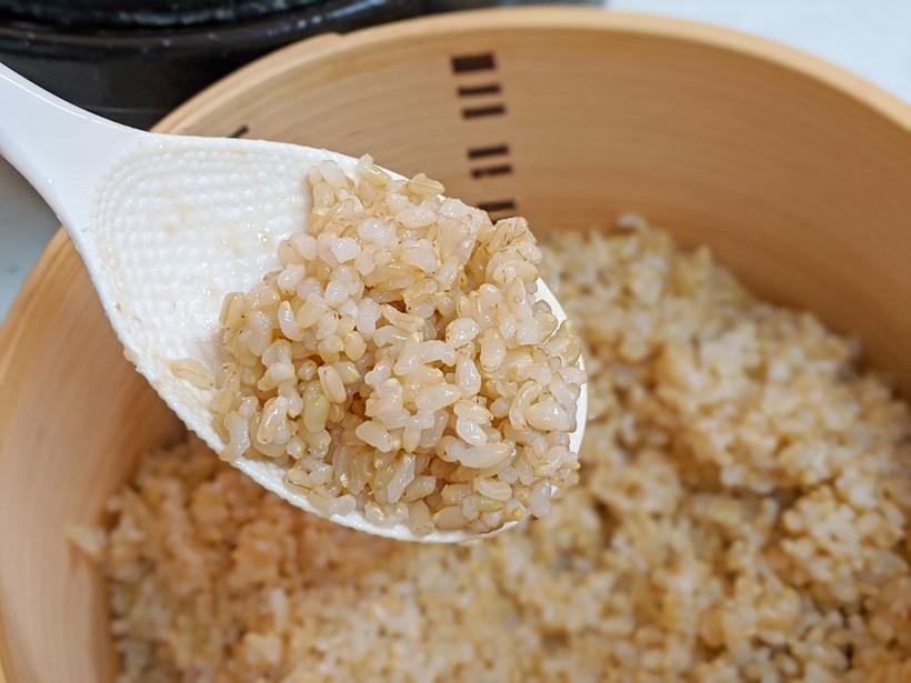 発芽玄米のメリットと適した玄米とは!?|無農薬・自然栽培米ミナミニシキ
