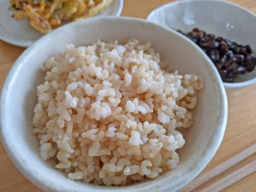 発芽玄米の作り方|自然栽培米ミナミニシキで自分で作る方法
