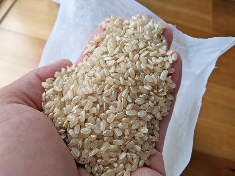 自然栽培玄米