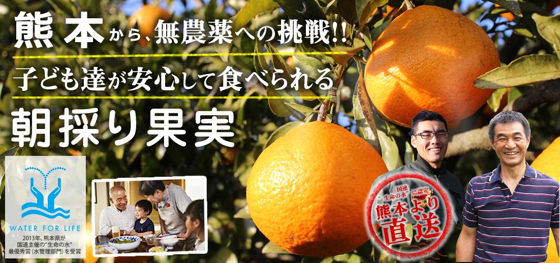 熊本自然果樹園