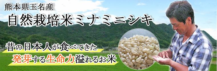 自然栽培米ミナミニシキサイト