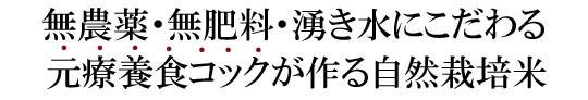縄田自然栽培米ミナミニシキ説明